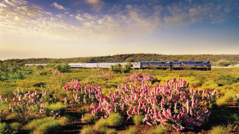 Indian Pacific: Perth-Sydney (4 days/3 nights)